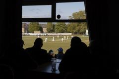 A portrait of English cricket